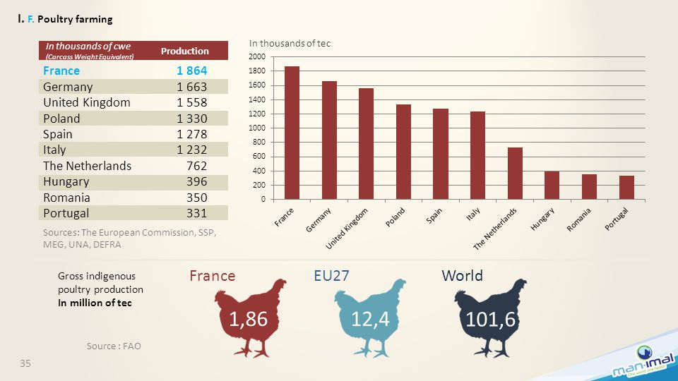 35 I. F. Poultry farming 1,8612,4 101,6 Source : FAO France EU27 World Gross indigenous poultry production In million of tec France Germany United Kin