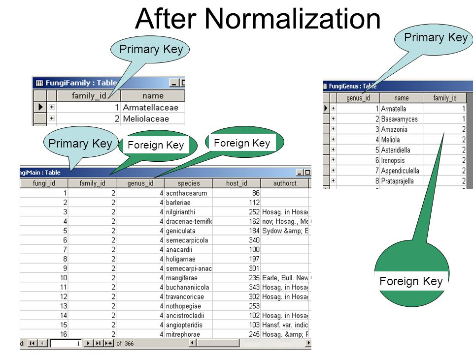After Normalization Primary Key Foreign Key