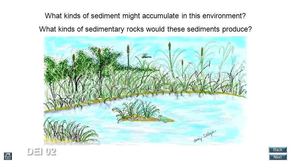What kinds of sediment might accumulate in this environment.