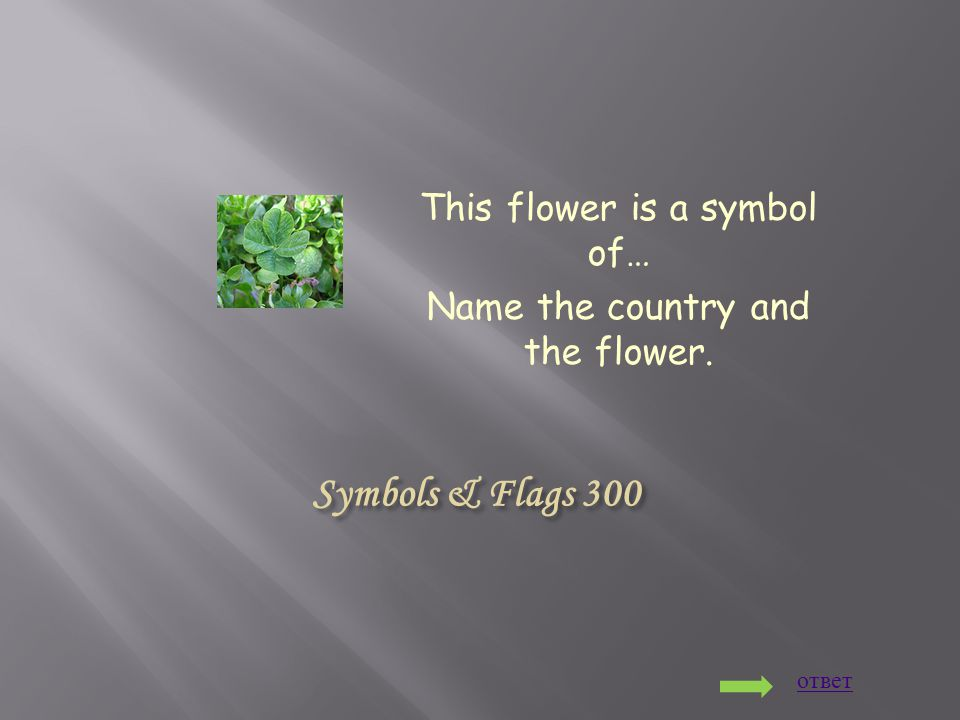 Symbols & Flags 300 This flower is a symbol of… Name the country and the flower. ответ