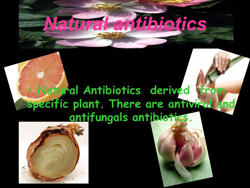Natural antibiotics Natural Antibiotics derived from specific plant. There are antiviral and antifungals antibiotics.