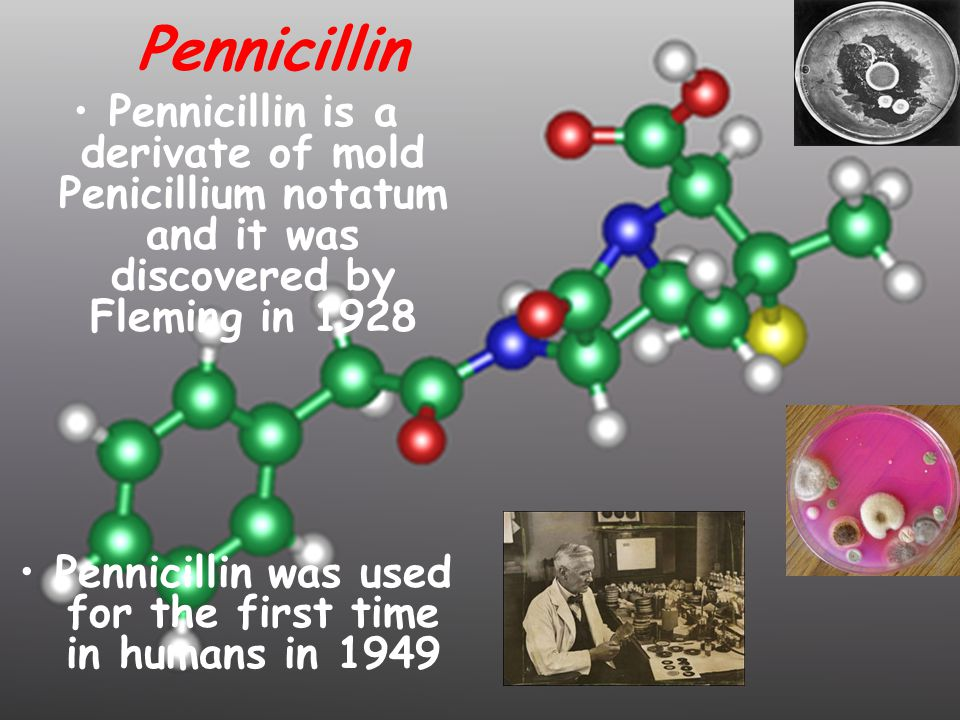 Pennicillin Pennicillin is a derivate of mold Penicillium notatum and it was discovered by Fleming in 1928 Pennicillin was used for the first time in