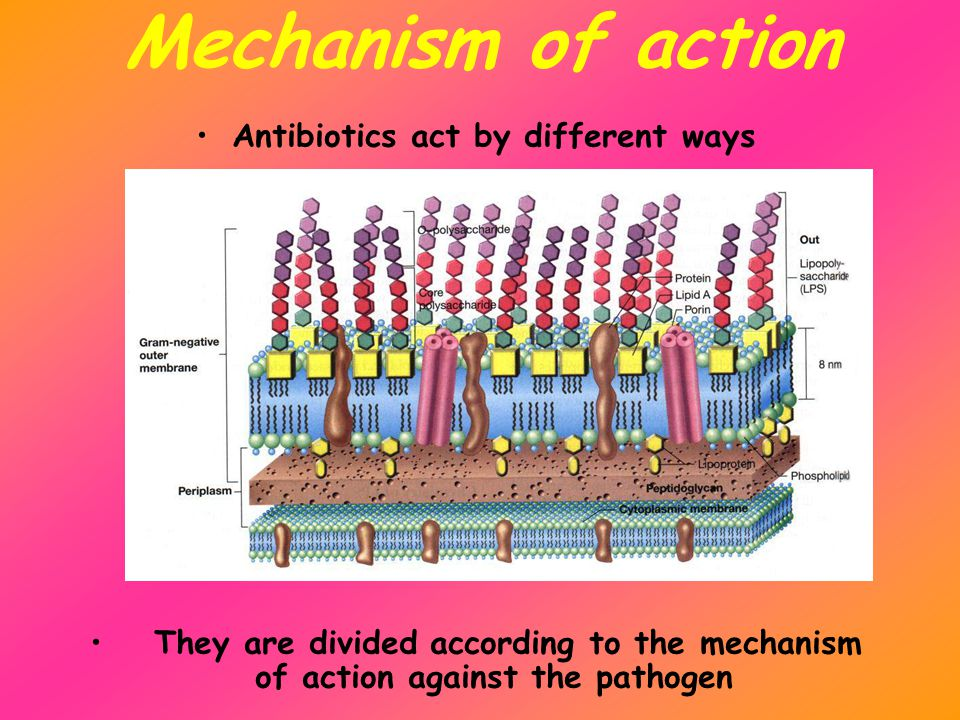 Mechanism of action Antibiotics act by different ways They are divided according to the mechanism of action against the pathogen