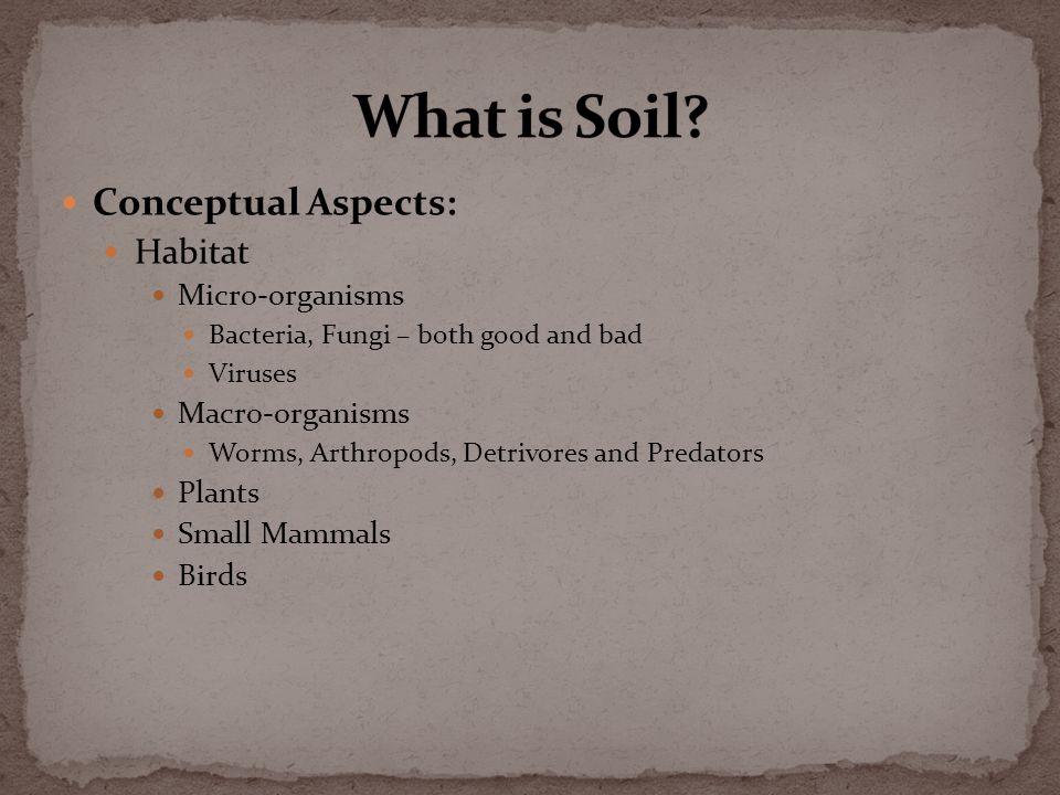 Conceptual Aspects: Habitat Micro-organisms Bacteria, Fungi – both good and bad Viruses Macro-organisms Worms, Arthropods, Detrivores and Predators Plants Small Mammals Birds