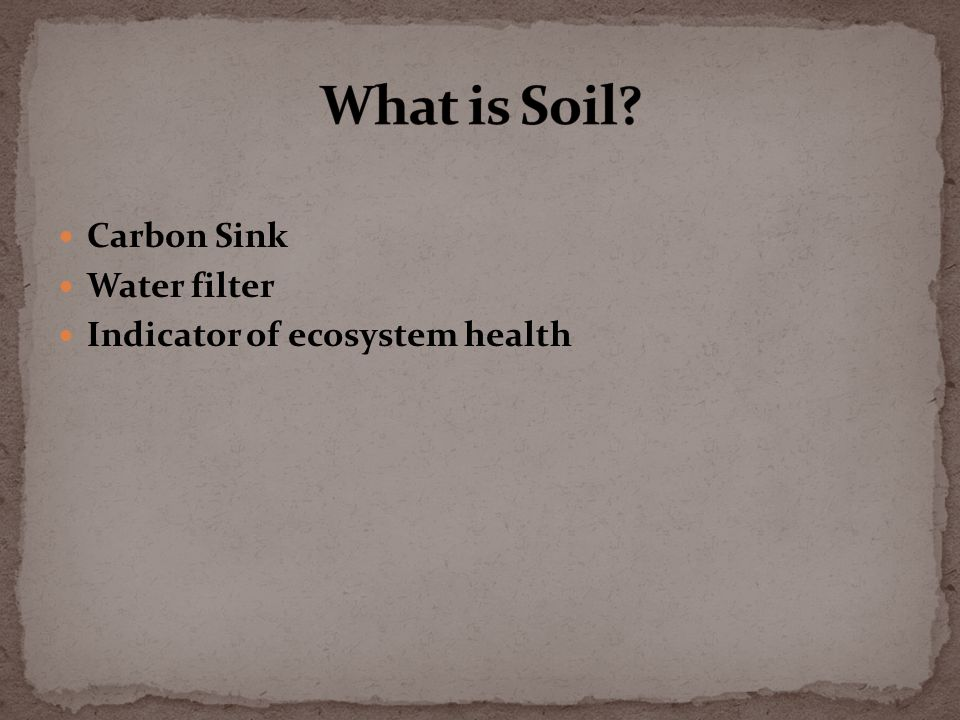 Carbon Sink Water filter Indicator of ecosystem health