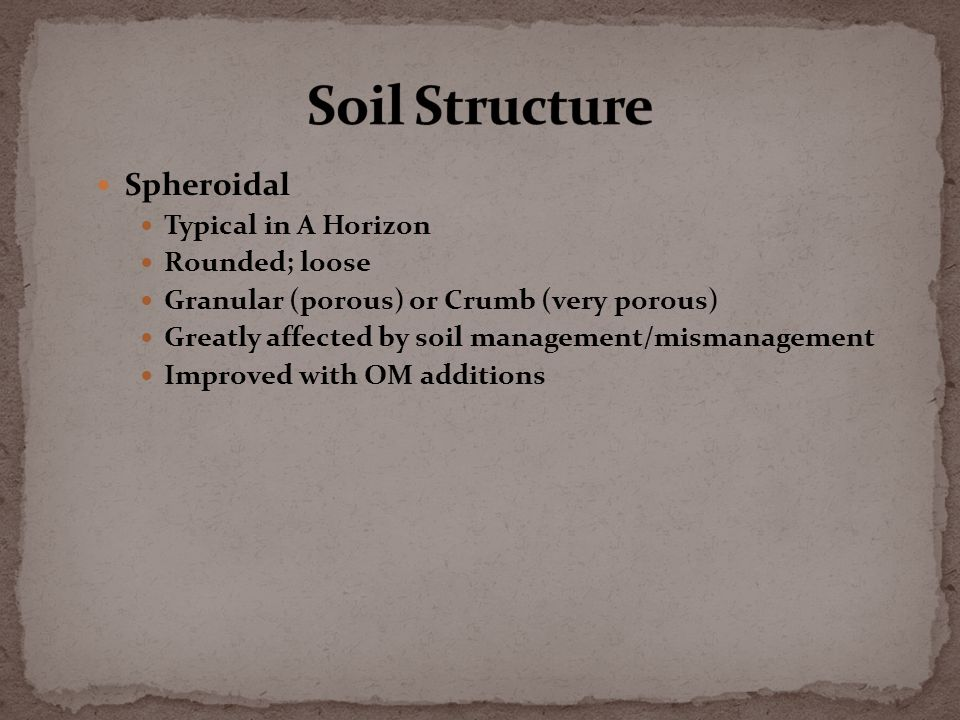 Spheroidal Typical in A Horizon Rounded; loose Granular (porous) or Crumb (very porous) Greatly affected by soil management/mismanagement Improved with OM additions