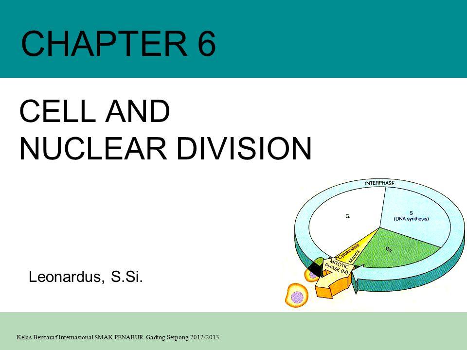 Kelas Berrtaraf Internasional SMAK PENABUR Gading Serpong 2012/2013 CELL AND NUCLEAR DIVISION CHAPTER 6 Leonardus, S.Si.