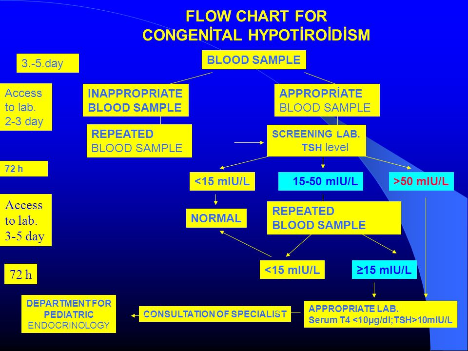 FLOW CHART FOR CONGENİTAL HYPOTİROİDİSM BLOOD SAMPLE INAPPROPRİATE BLOOD SAMPLE APPROPRİATE BLOOD SAMPLE REPEATED BLOOD SAMPLE SCREENING LAB.