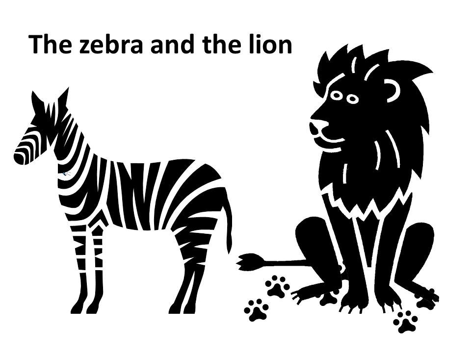 The ultimate stress book Why Zebras Don't Get Ulcers: Stress, Performance & Coping — Robert Sapolsky, PhD Professor of Biological Sciences and Neurology at Stanford University