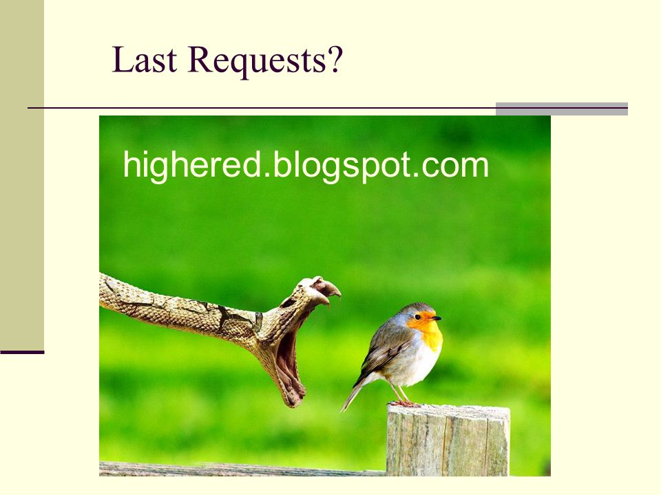 Last Requests? highered.blogspot.com