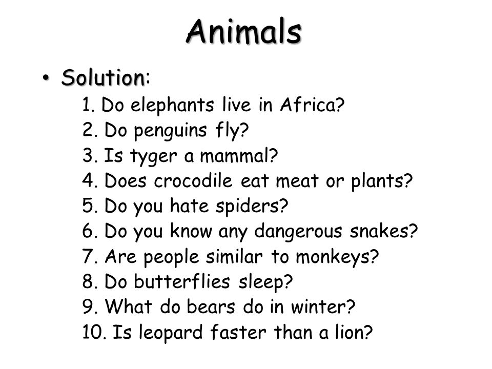 Solution Solution: 1. Do elephants live in Africa? 2. Do penguins fly? 3. Is tyger a mammal? 4. Does crocodile eat meat or plants? 5. Do you hate spid