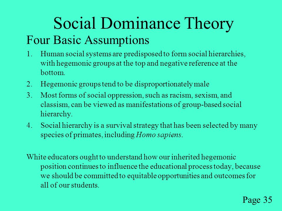 Social Dominance Theory Four Basic Assumptions 1.Human social systems are predisposed to form social hierarchies, with hegemonic groups at the top and