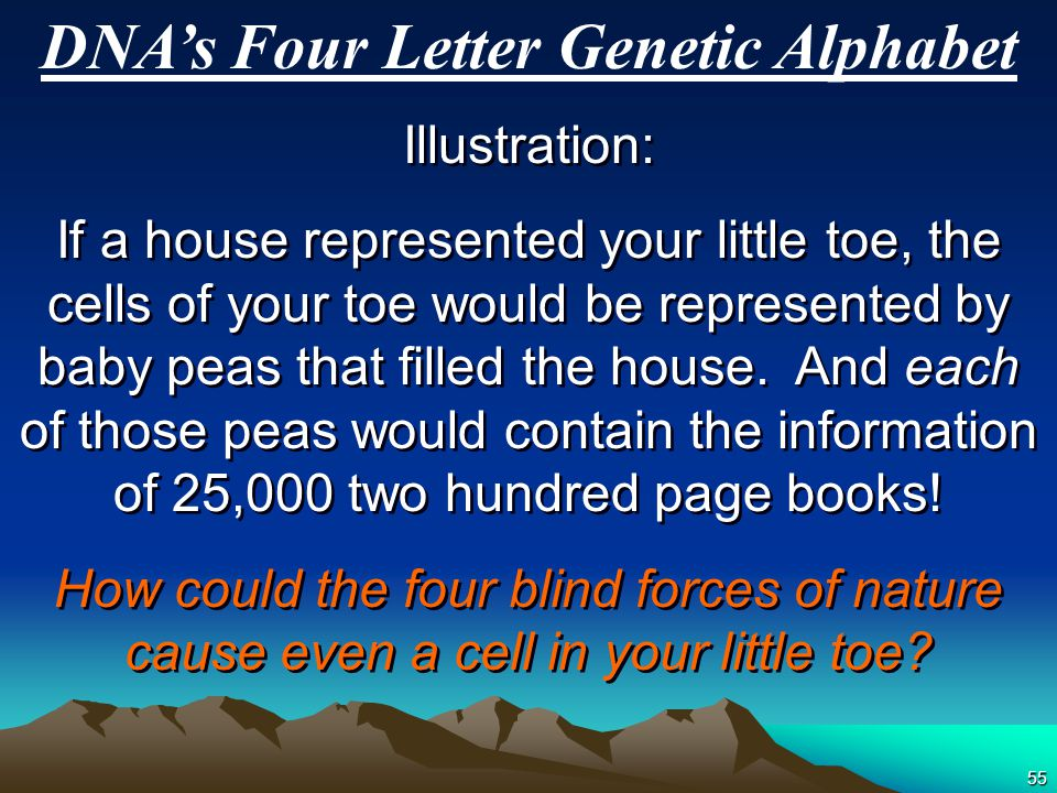 55 DNA's Four Letter Genetic Alphabet Illustration: If a house represented your little toe, the cells of your toe would be represented by baby peas that filled the house.