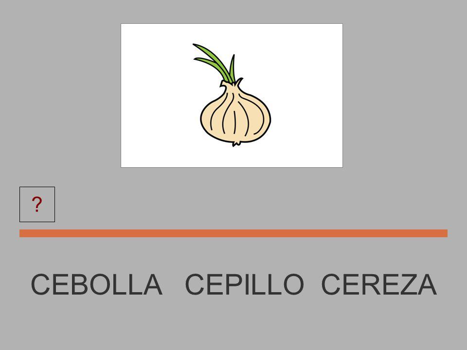 CEPILLO CEPILLO CEBOLLA CINE