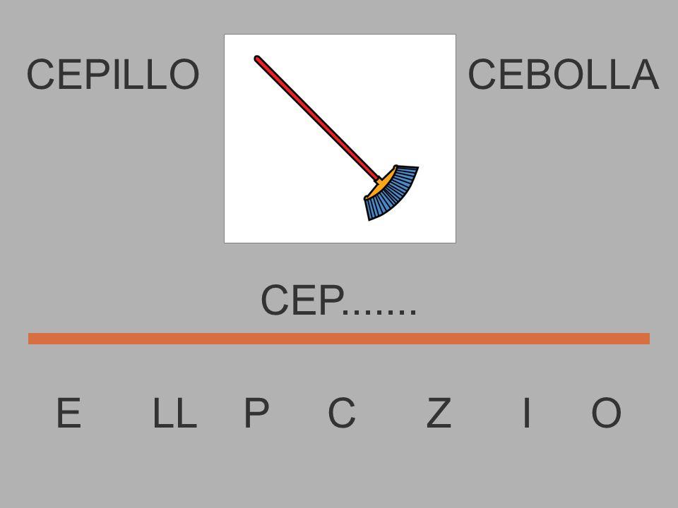 E LL P C Z I O CE......... CEPILLOCEBOLLA