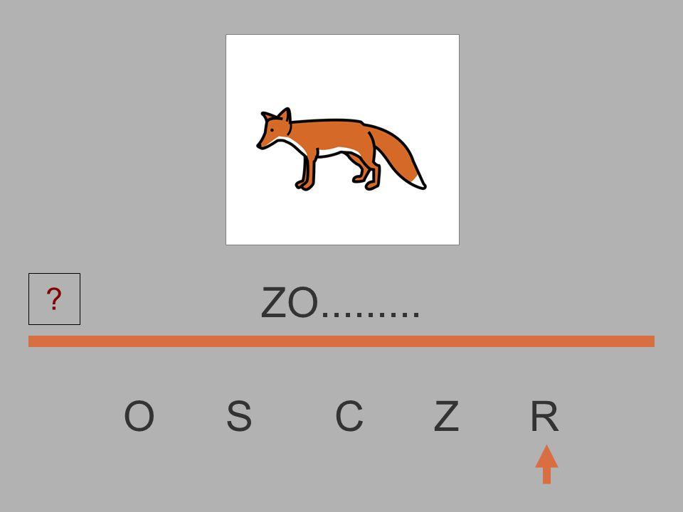 O S C Z R Z............