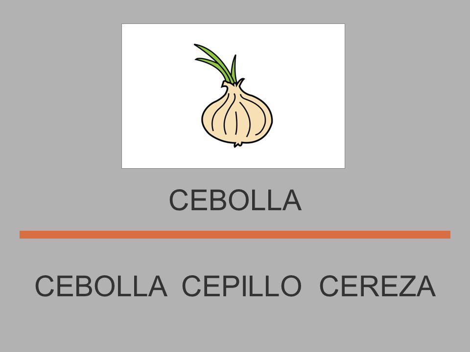 CEPILLO CEBOLLA CEREZA CEPILLO