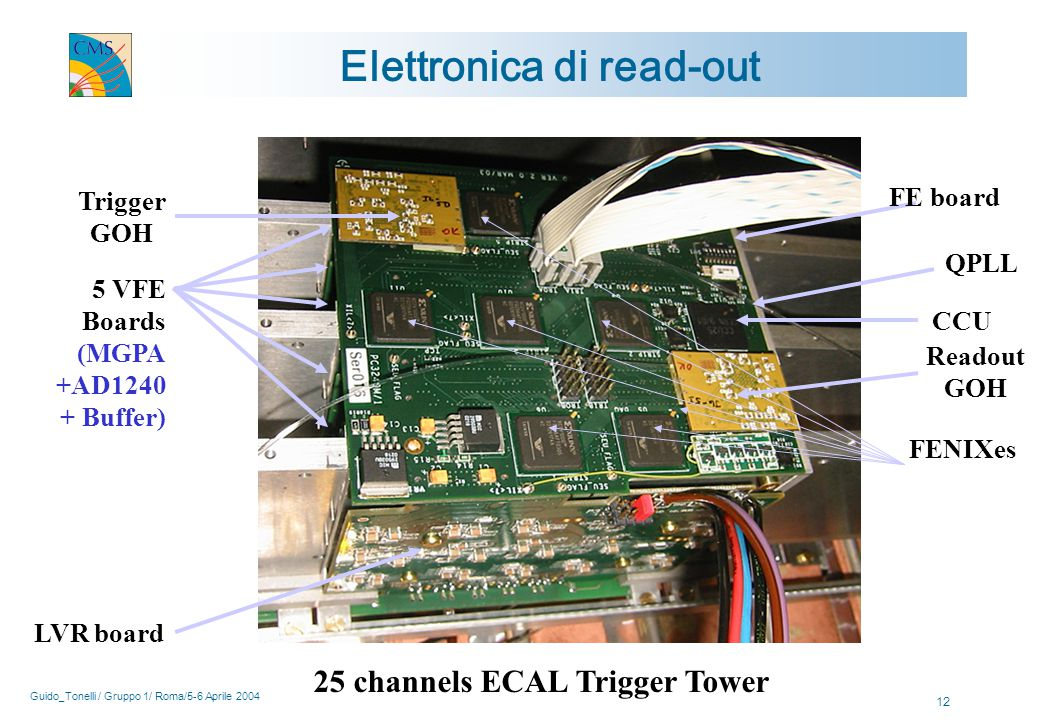 Guido_Tonelli / Gruppo 1/ Roma/5-6 Aprile 2004 12 Trigger GOH CCU FENIXes FE board LVR board Readout GOH 5 VFE Boards (MGPA +AD1240 + Buffer) Elettronica di read-out 25 channels ECAL Trigger Tower QPLL