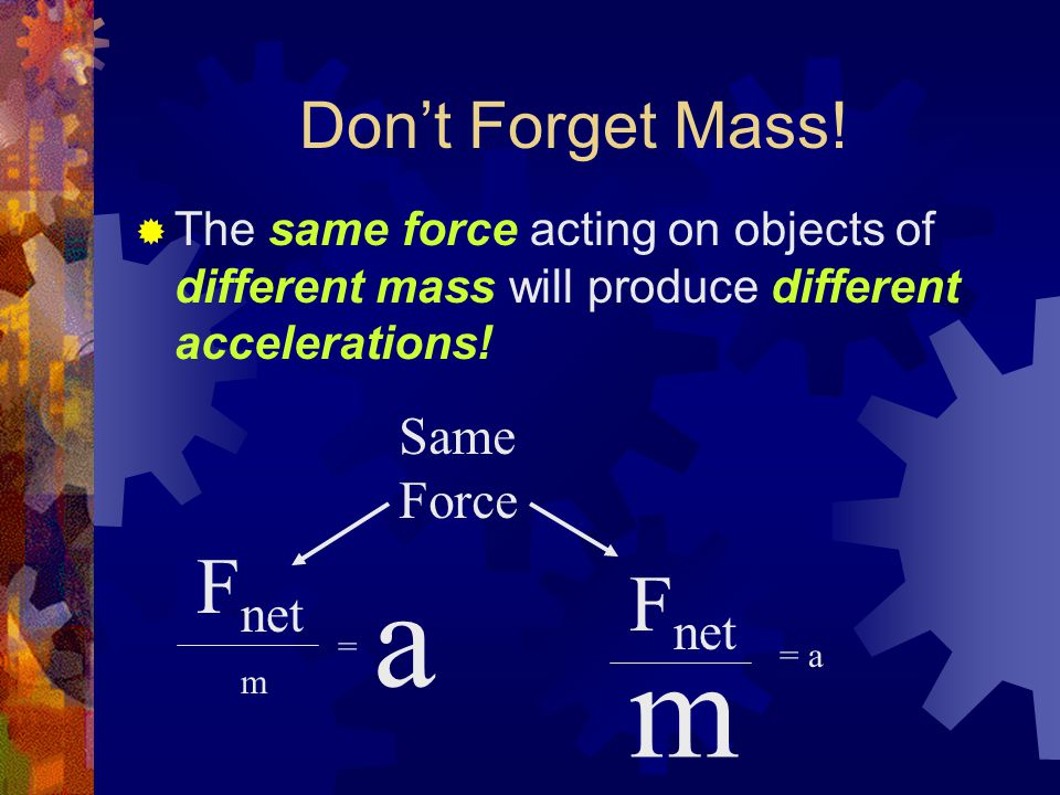 Don't Forget Mass.