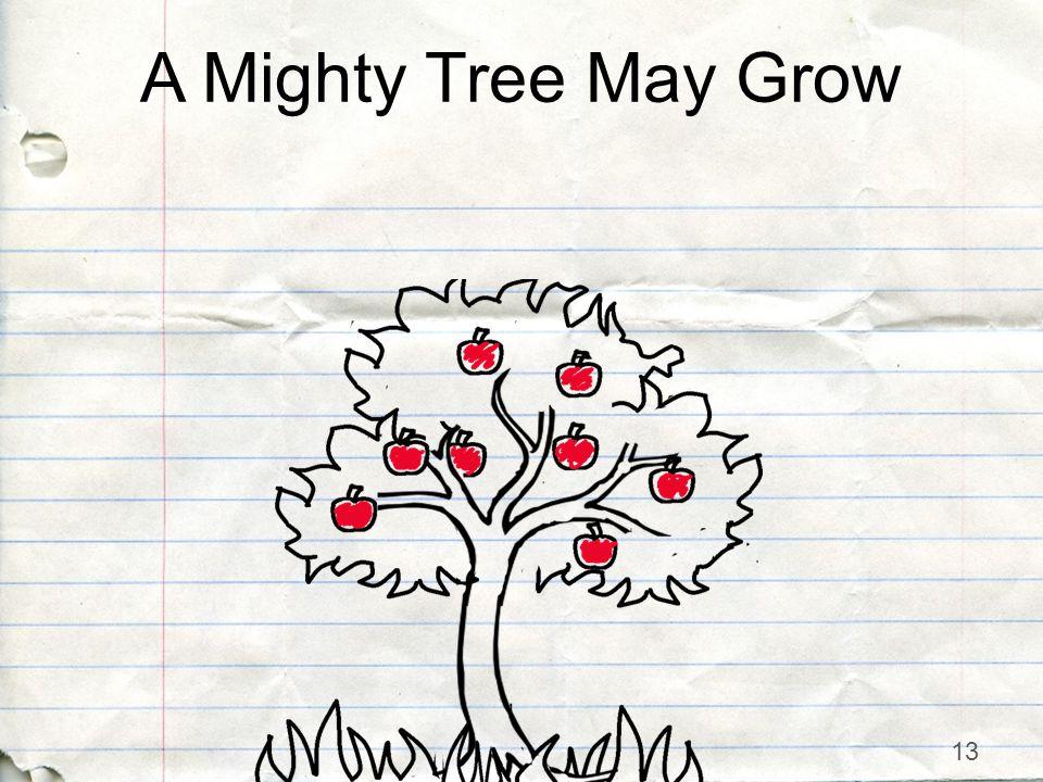13 A Mighty Tree May Grow