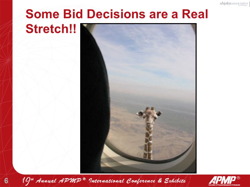 6 Some Bid Decisions are a Real Stretch!!