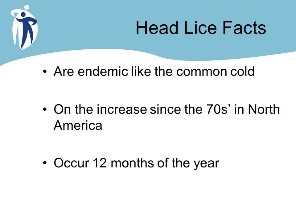 Head Lice Facts Are endemic like the common cold On the increase since the 70s' in North America Occur 12 months of the year