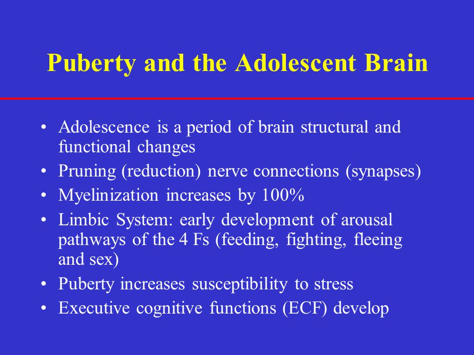 Puberty and the Adolescent Brain Adolescence is a period of brain structural and functional changes Pruning (reduction) nerve connections (synapses) M