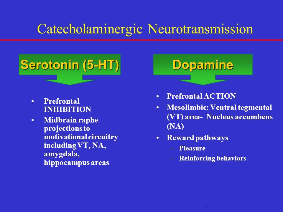 Catecholaminergic Neurotransmission Prefrontal INHIBITION Midbrain raphe projections to motivational circuitry including VT, NA, amygdala, hippocampus