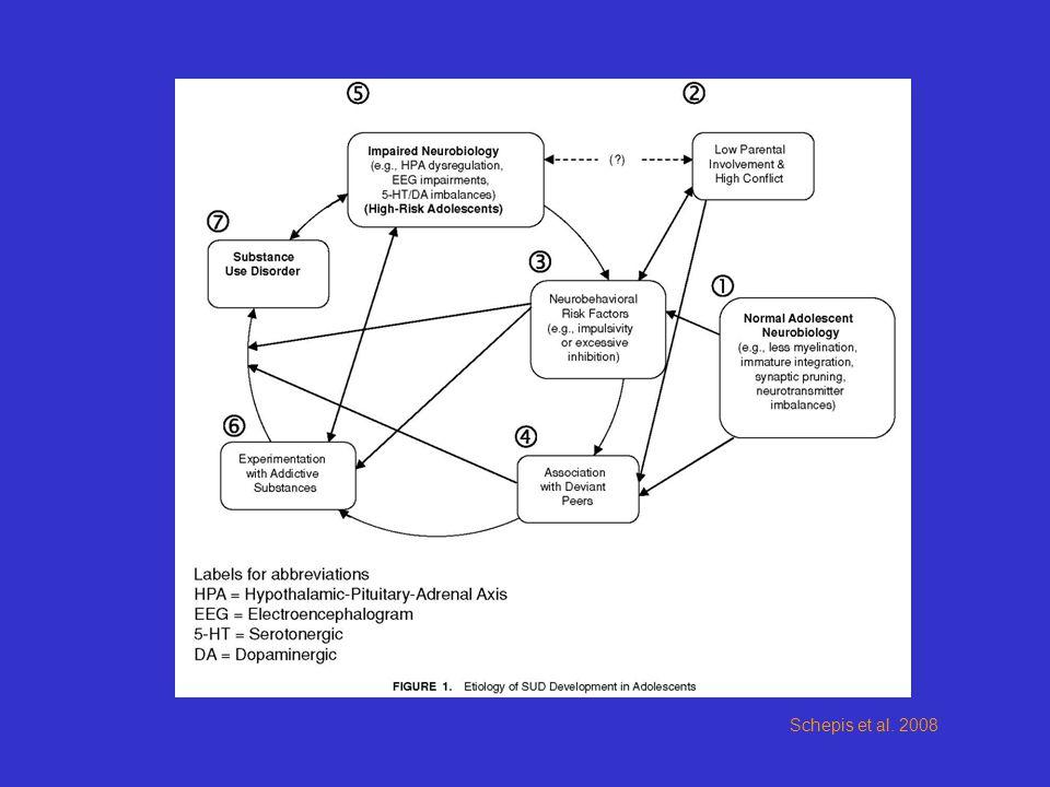 Schepis et al. 2008