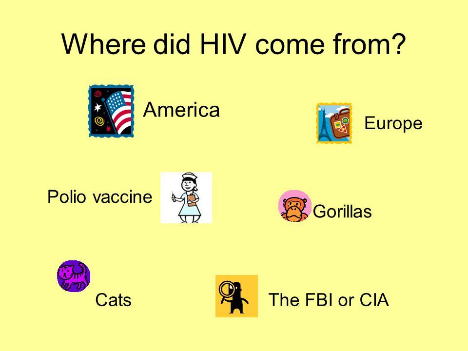 Where did HIV come from? America Europe Polio vaccine Gorillas CatsThe FBI or CIA