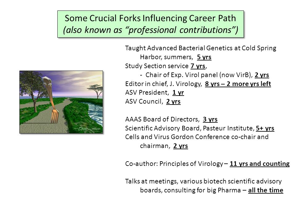 Some Crucial Forks Influencing Career Path (also known as professional contributions ) Some Crucial Forks Influencing Career Path (also known as professional contributions ) A passion for more than research Deciding to get out of the box Networking and expanding horizons A passion for more than research Deciding to get out of the box Networking and expanding horizons