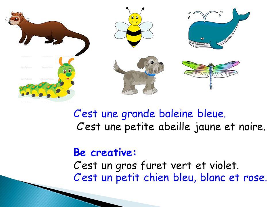 C'est une grande baleine bleue. C'est une petite abeille jaune et noire. Be creative: C'est un gros furet vert et violet. C'est un petit chien bleu, b