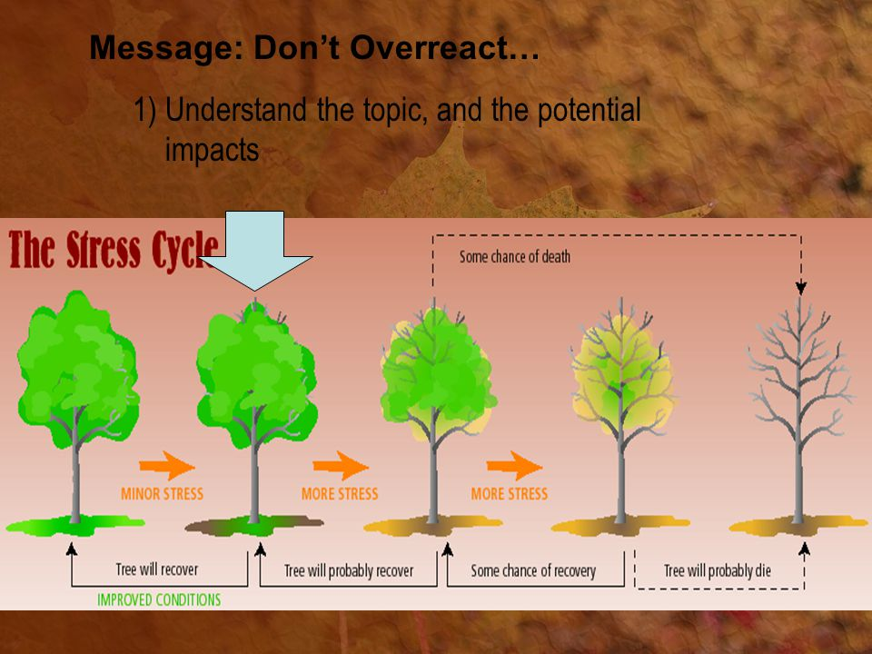 Message: Don't Overreact… 1)Understand the topic, and the potential impacts
