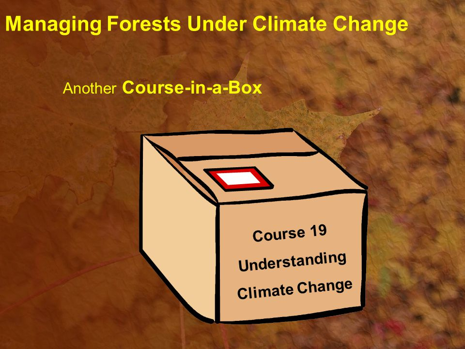 The need to practice sustainable forestry Good