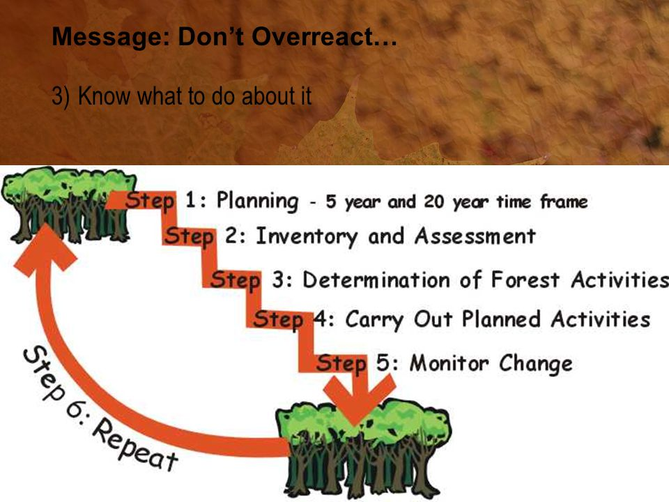Message: Don't Overreact… 3) Know what to do about it