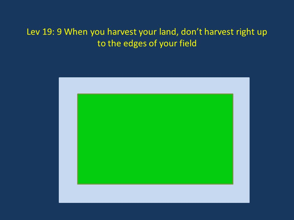 Lev 19: 9 When you harvest your land, don't harvest right up to the edges of your field