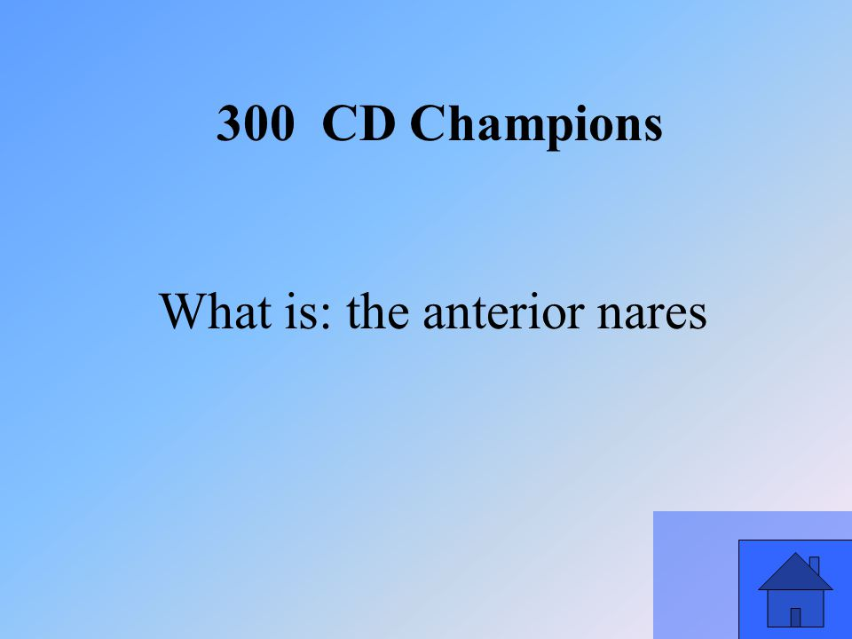 47 What is: the anterior nares 300 CD Champions
