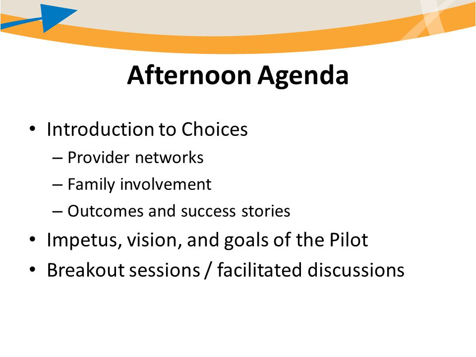 Afternoon Agenda Introduction to Choices – Provider networks – Family involvement – Outcomes and success stories Impetus, vision, and goals of the Pilot Breakout sessions / facilitated discussions