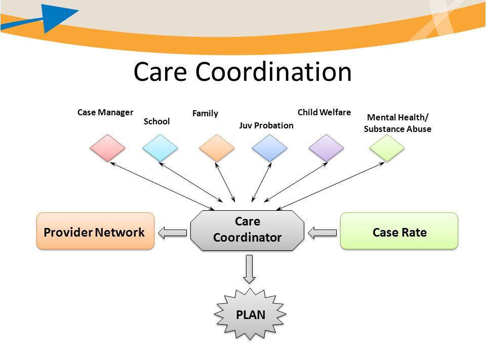 Care Coordination PLAN Case Manager School Family Juv Probation Child Welfare Mental Health/ Substance Abuse Care Coordinator Case RateProvider Network
