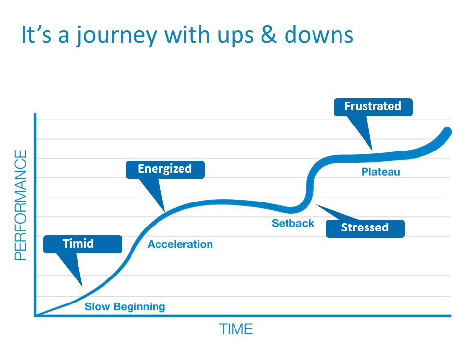 It's a journey with ups & downs Timid Frustrated Energized Stressed