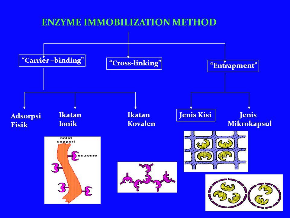 ENZYME IMMOBILIZATION METHOD Carrier –binding Cross-linking Entrapment Adsorpsi Fisik Ikatan Kovalen Ikatan Ionik Jenis Mikrokapsul Jenis Kisi