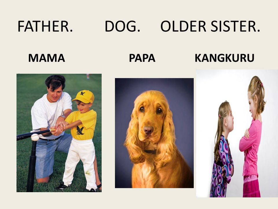 FATHER. DOG. OLDER SISTER. MAMA PAPA KANGKURU
