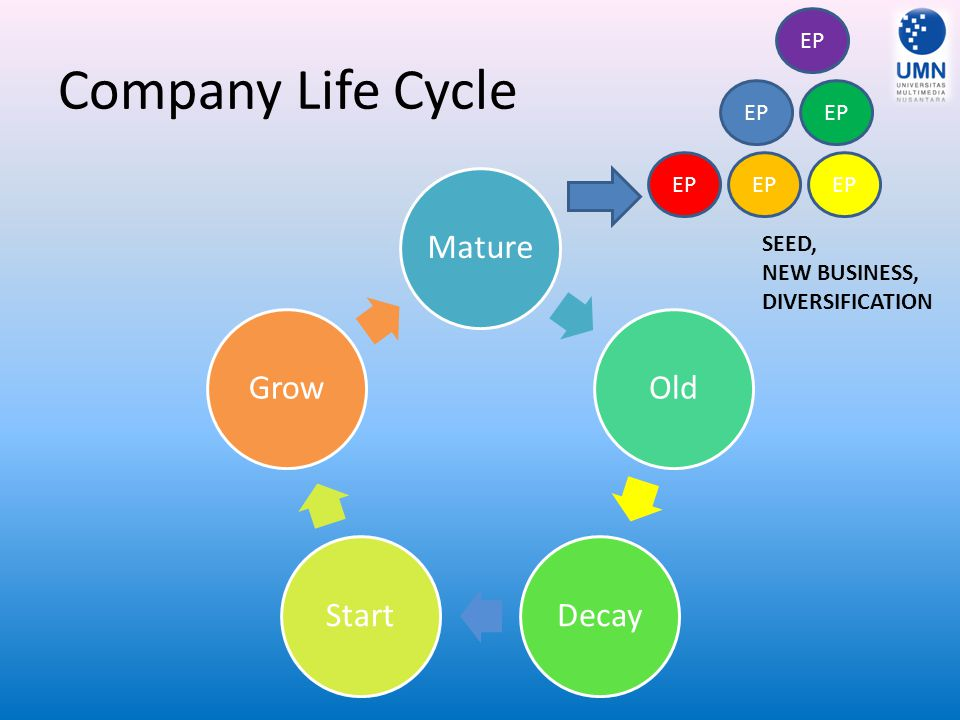 Company Life Cycle MatureOldDecayStartGrow EP SEED, NEW BUSINESS, DIVERSIFICATION