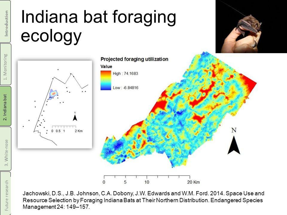 Indiana bat foraging ecology Jachowski, D.S., J.B.