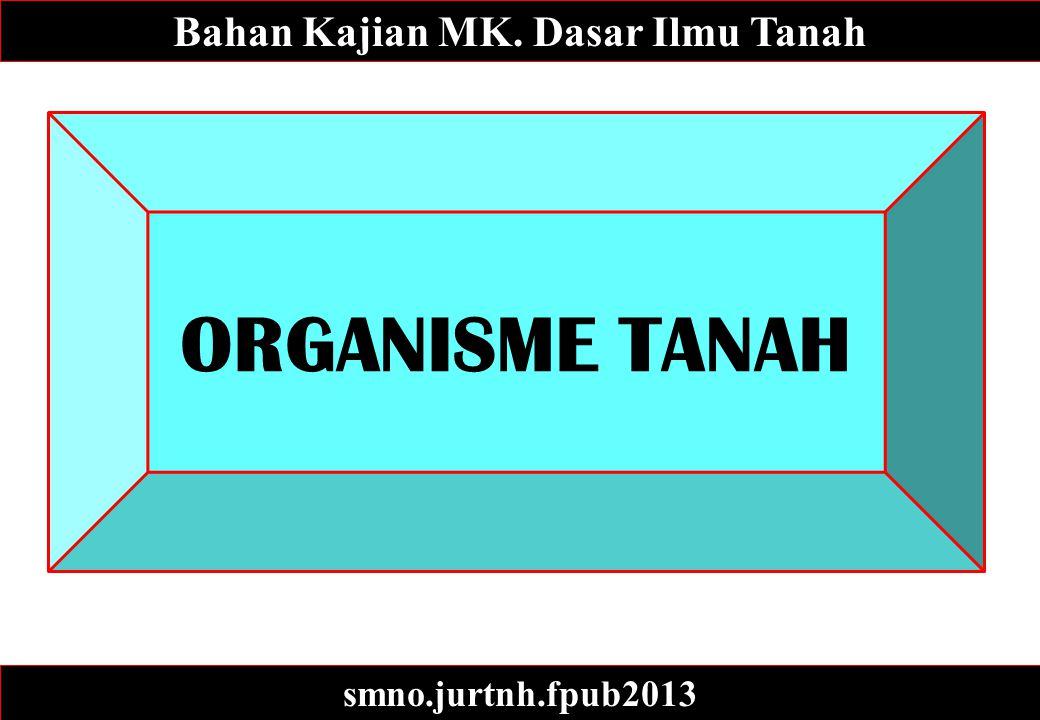 ORGANISME TANAH Bahan Kajian MK. Dasar Ilmu Tanah smno.jurtnh.fpub2013