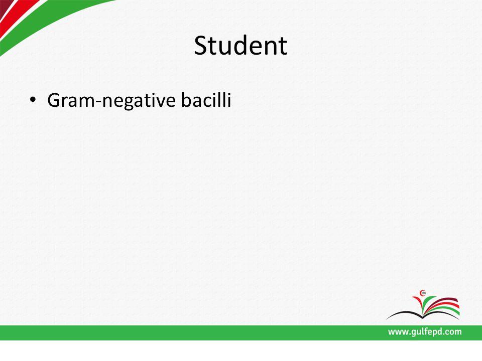 Student Gram-negative bacilli