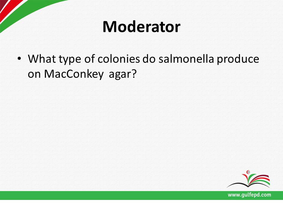 Moderator What type of colonies do salmonella produce on MacConkey agar?