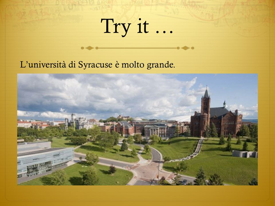 Question  C'è un'università nella città dove abitate?