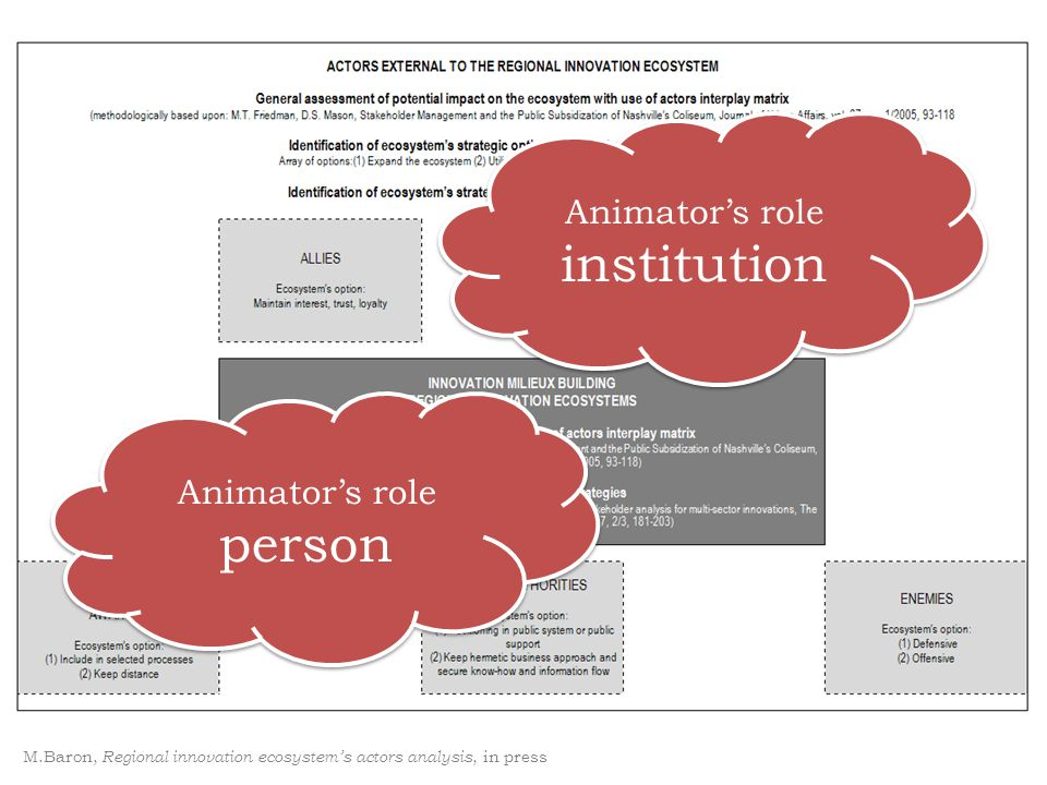 M.Baron, Regional innovation ecosystem's actors analysis, in press Animator's role institution Animator's role institution Animator's role person Anim