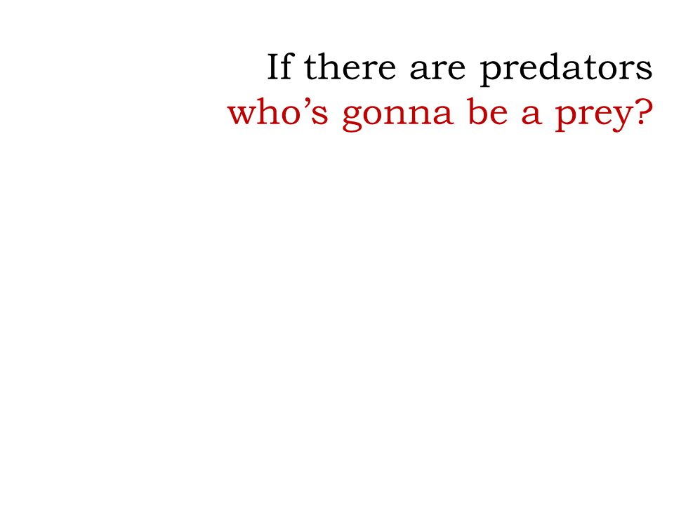 If there are predators who's gonna be a prey?